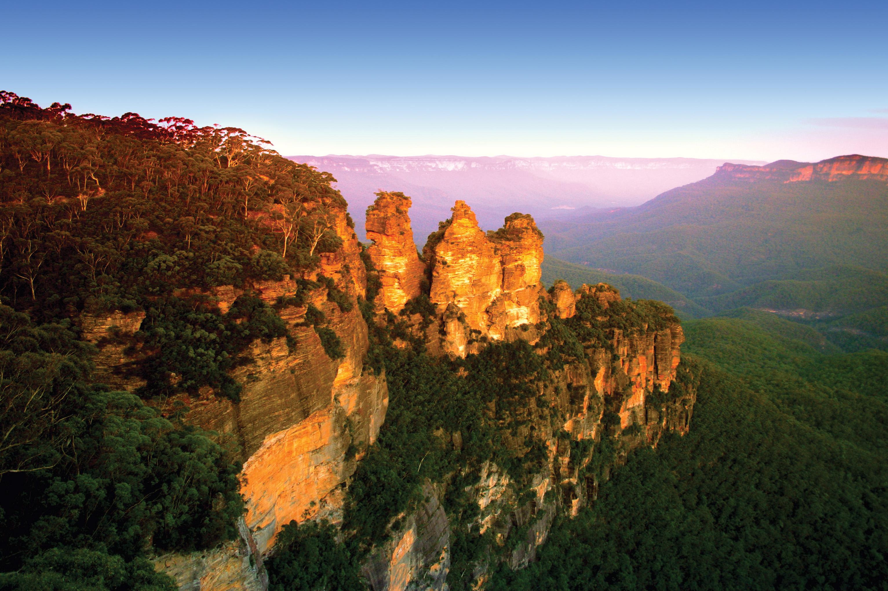 home brew nsw blue mountains - photo#32